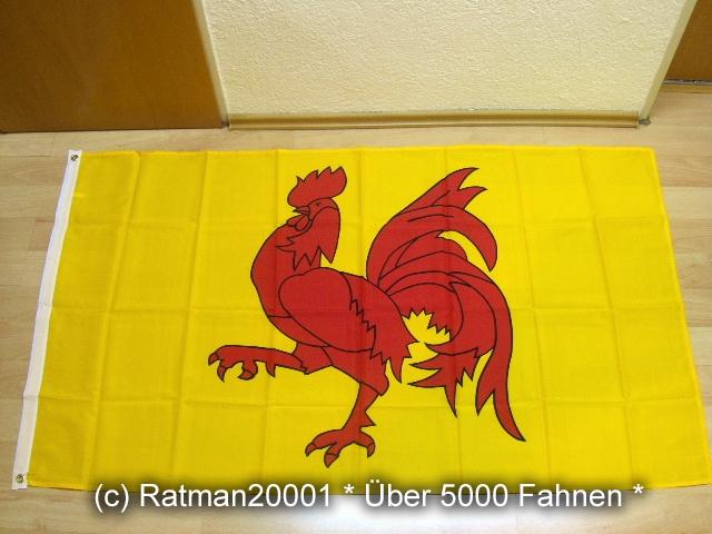 Belgien Wallonien - 90 x 150 cm