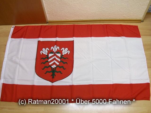 Halle Westfalen - 90 x 150 cm