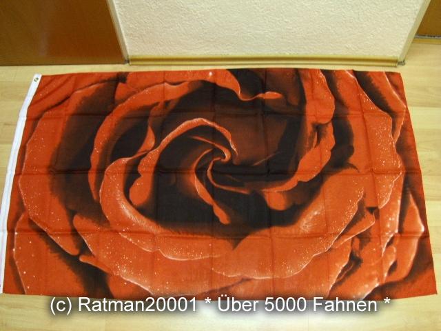 Rose - 90 x 150  cm