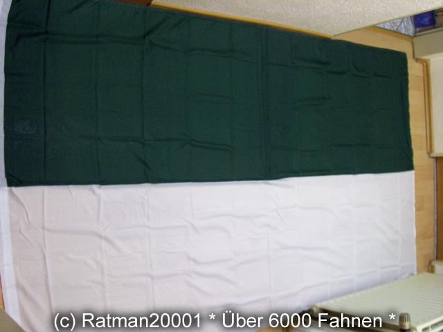 Schützenfest - 1 - Grün Weiss -150 x 250 cm